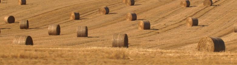złączki, połączenia, zszywki i spinki do pasów i taśm - zastosowanie w rolnictwie